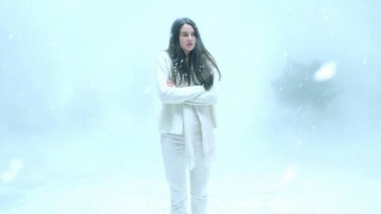 white-bird-in-a-blizzard01