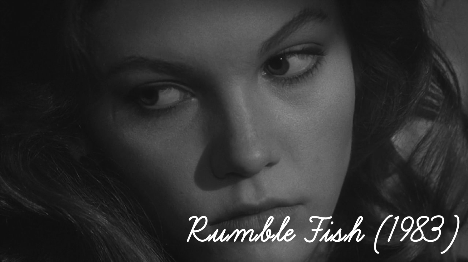 5 paragraph essay on rumble fish Strong essays: essay on rumble fish journal - journal#1 i started out kind of confused rusty-james, the main character is talking to, i guess, an old friend i don't.